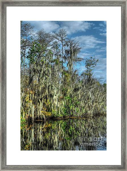 Reflectionist Framed Print
