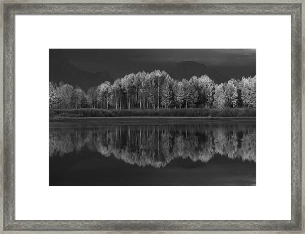 Reflections Framed Print