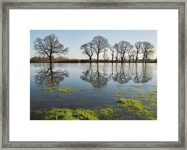Reflections In Flood Water Framed Print