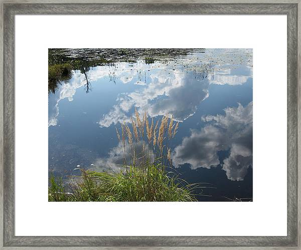 Reflections In The Water Framed Print by Carolyn Reinhart