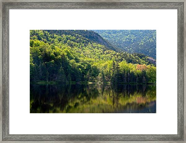 Reflections Of Majesty Framed Print