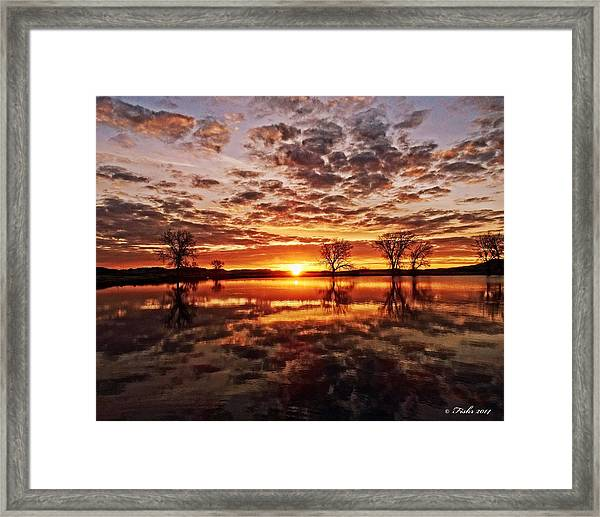 Reflective Dawn Framed Print