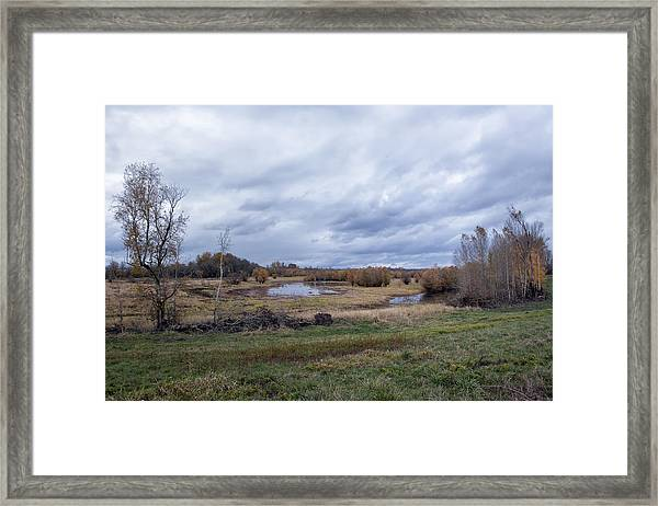 Refuge No 1 Framed Print