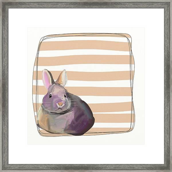 Rescued Bunny Framed Print