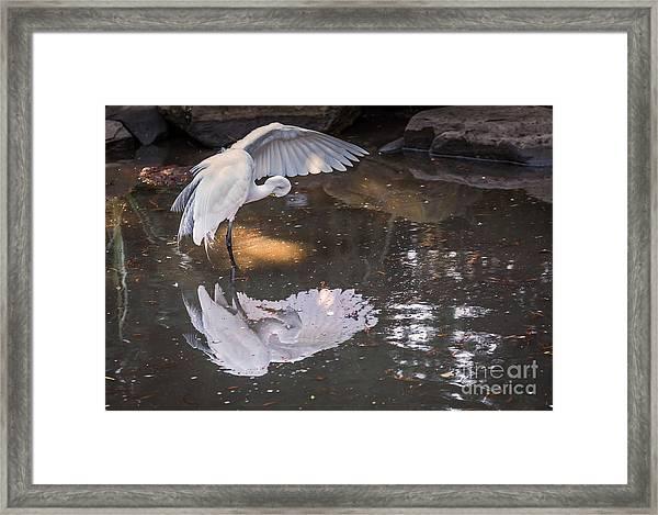 Revealed Landscape Framed Print