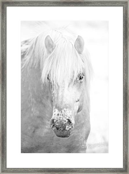 Revelation... Framed Print