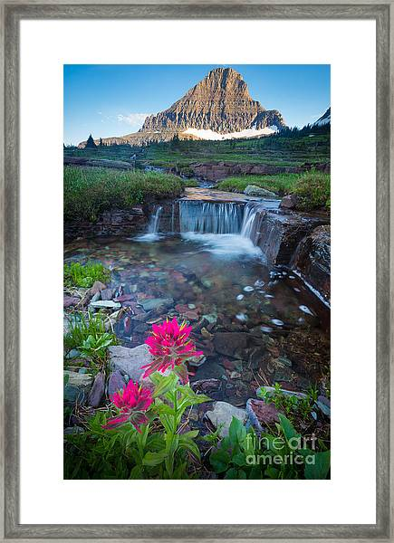 Reynolds Mountain Paintbrush Framed Print