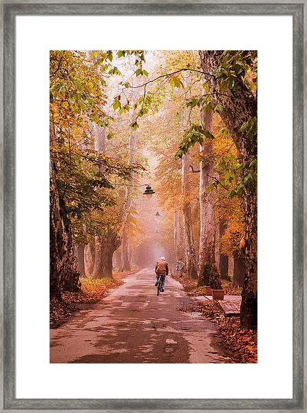 Ride A Bicycle Framed Print