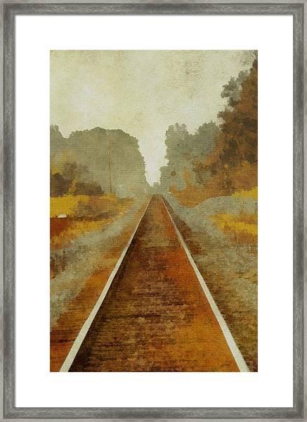 Riding The Rails Framed Print