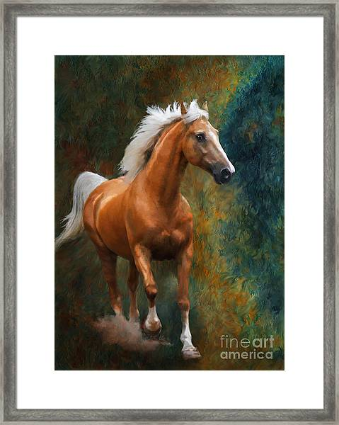 Framed Print featuring the photograph Rio by Melinda Hughes-Berland