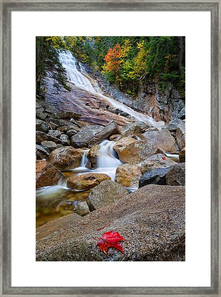 Ripley Falls And Red Maple Leaf Framed Print
