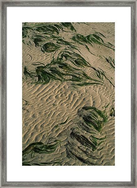 Ripple Pattern On Sand Dunes Framed Print
