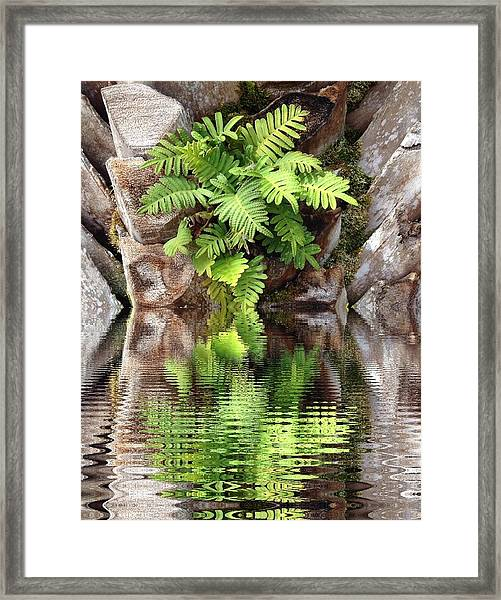 Ripples And Reflection Framed Print