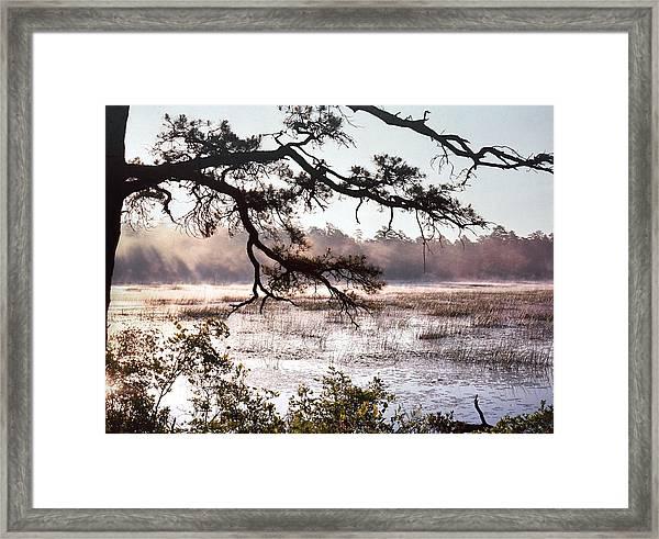 Rising Mist On Batsto Lake Framed Print