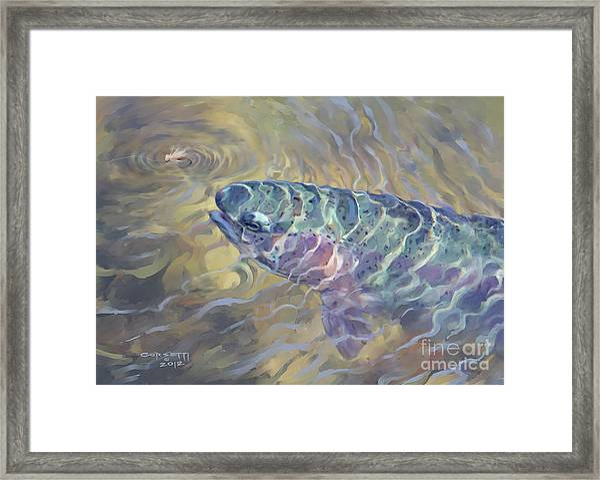 Rainbow Rising Framed Print