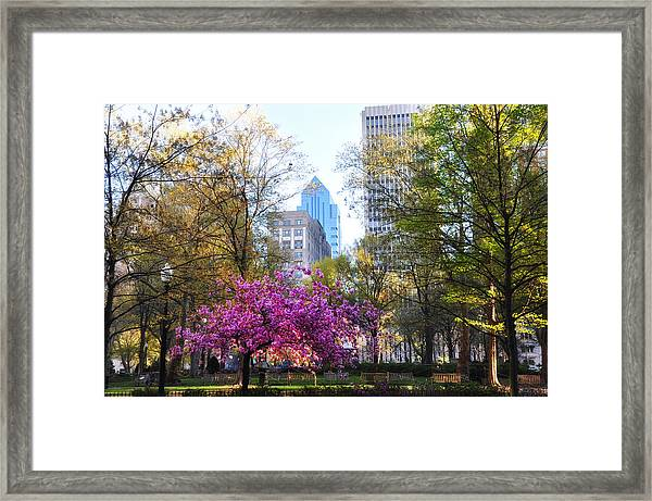 Rittenhouse Square In Springtime Framed Print