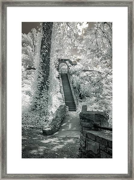 Ritter Park Framed Print