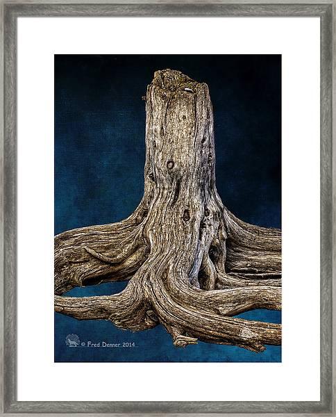 River Bar Beauty Framed Print