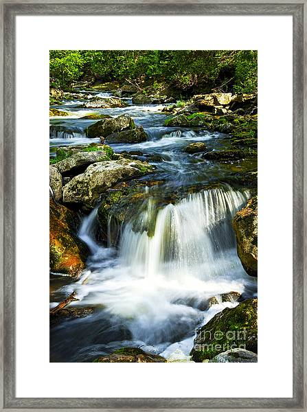River Flowing Through Woods Framed Print