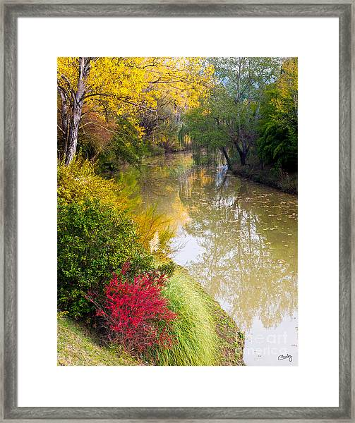 River With Autumn Colors Framed Print