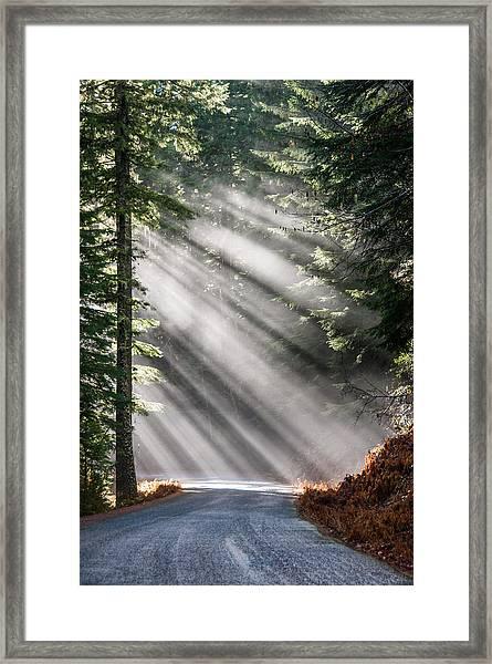 Road Less Travelled Framed Print