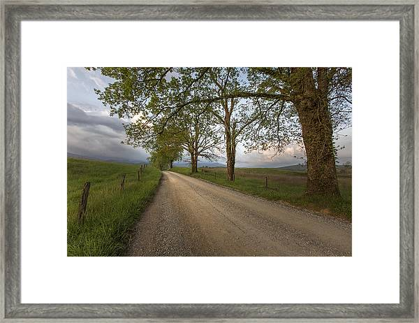 Road Not Traveled II Framed Print