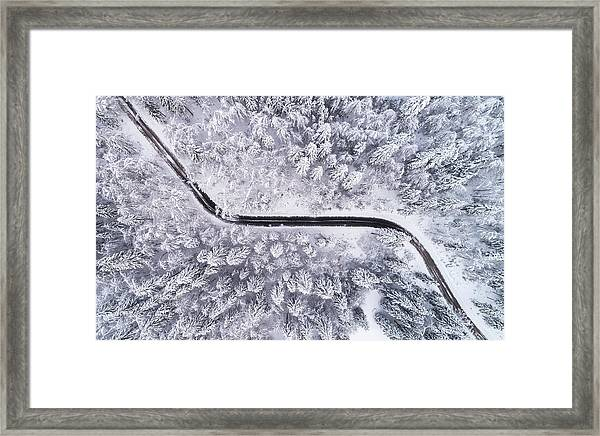 Road Through The Winter Forest Framed Print