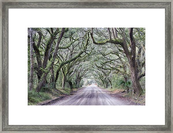 Road To Botany Bay Framed Print