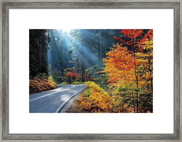 Road To Glory  Framed Print