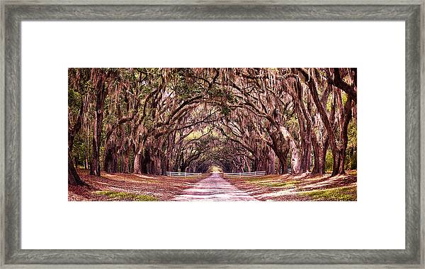 Road To The South Framed Print