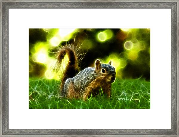 Robbie The Squirrel - 7376 - F Framed Print