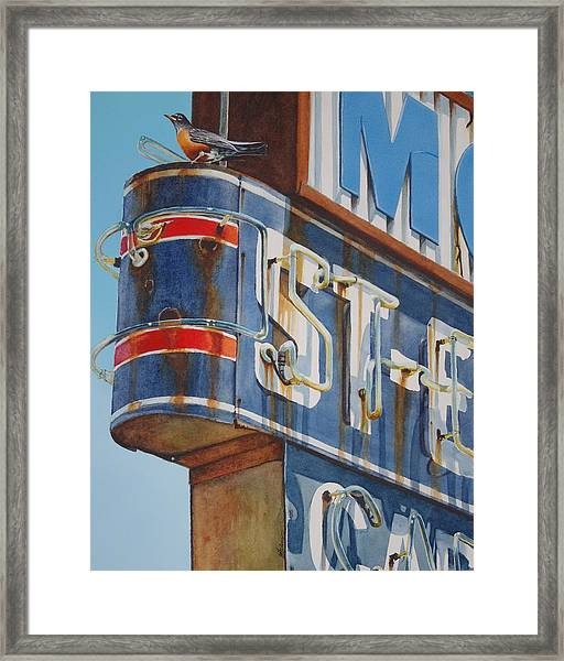 Robin And Motel Framed Print