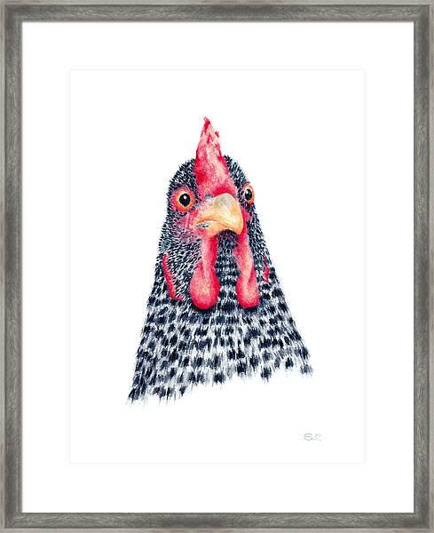 Rock Framed Print by Sarah Rosedahl