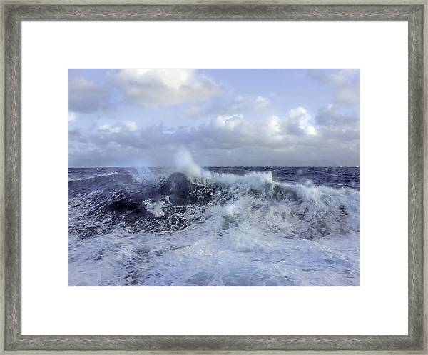 Rocking And Rolling In The Deep Sea Framed Print