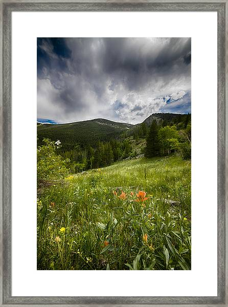 Rocky Mountain Meadow Framed Print by Garett Gabriel