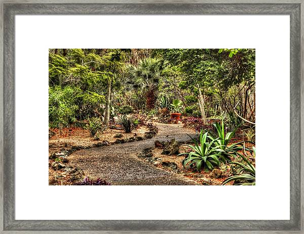 Rocky Road Framed Print