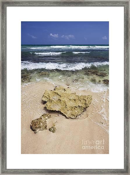 Rocky Shoreline In Tulum Framed Print
