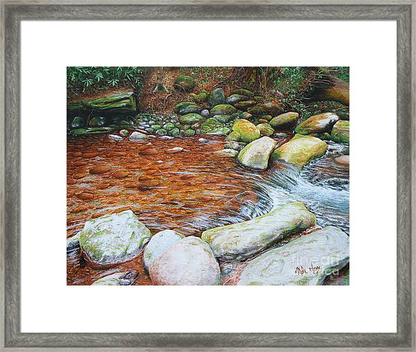 Rocky Stream Framed Print