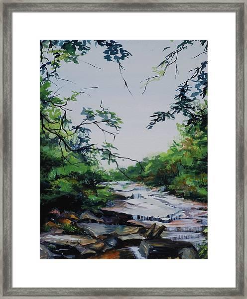 Rocky Stream Framed Print