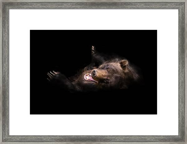 Rofl Framed Print