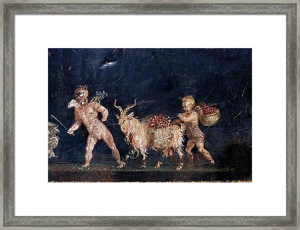 Roman Fresco Showing Flower Dealers Framed Print by Patrick Landmann/science Photo Library