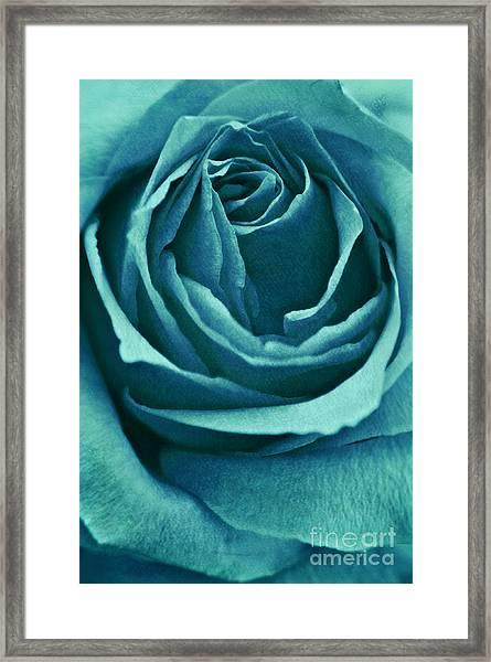 Romance II Framed Print