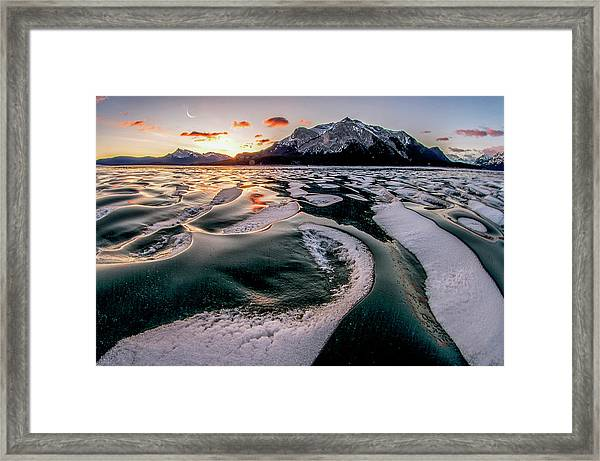 Romance On Ice Framed Print by Charles Lai