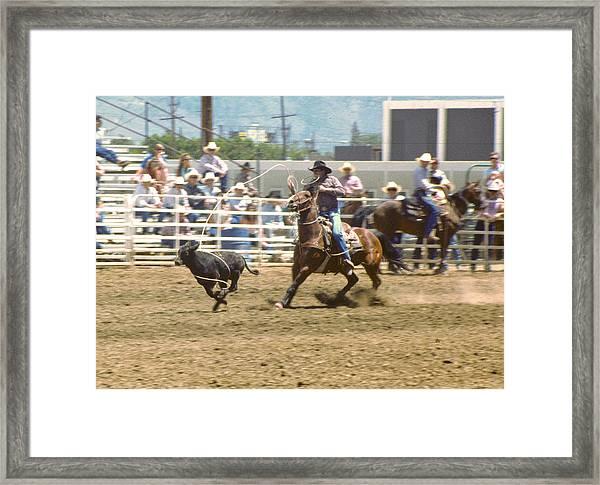 Roping Calf Framed Print