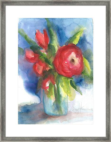 Rose Blooming Framed Print