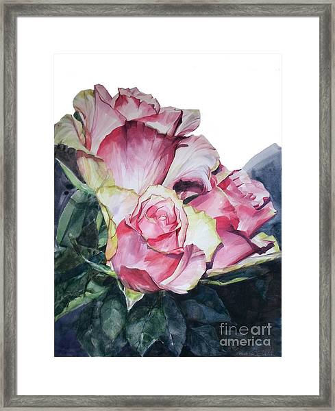 Watercolor Of A Bouquet Of Pink Roses I Call Rose Michelangelo Framed Print