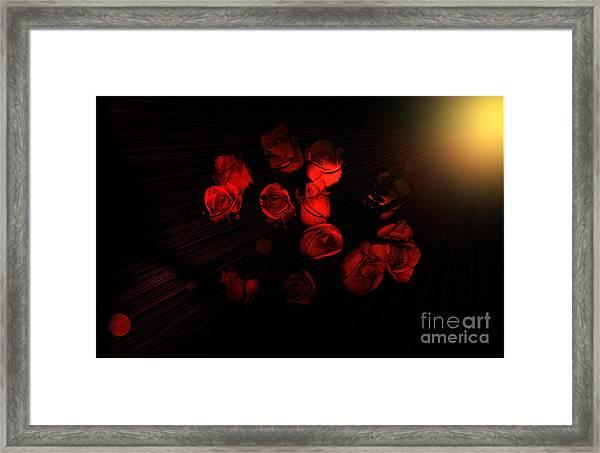 Roses And Black Framed Print