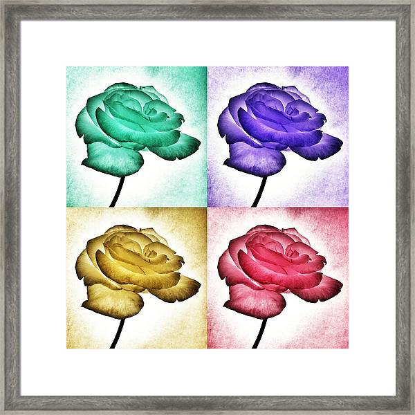 Roses - Pop Art Framed Print
