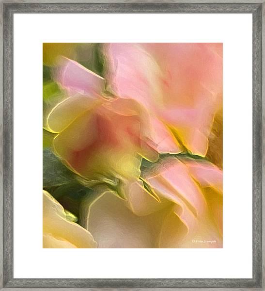Rosey Blur Framed Print