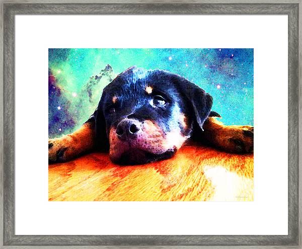 Rottie Puppy By Sharon Cummings Framed Print